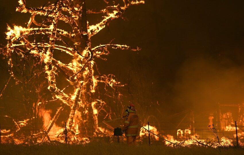 مرگ چند نفر در حادثه آتش سوزی درخت کریسمس
